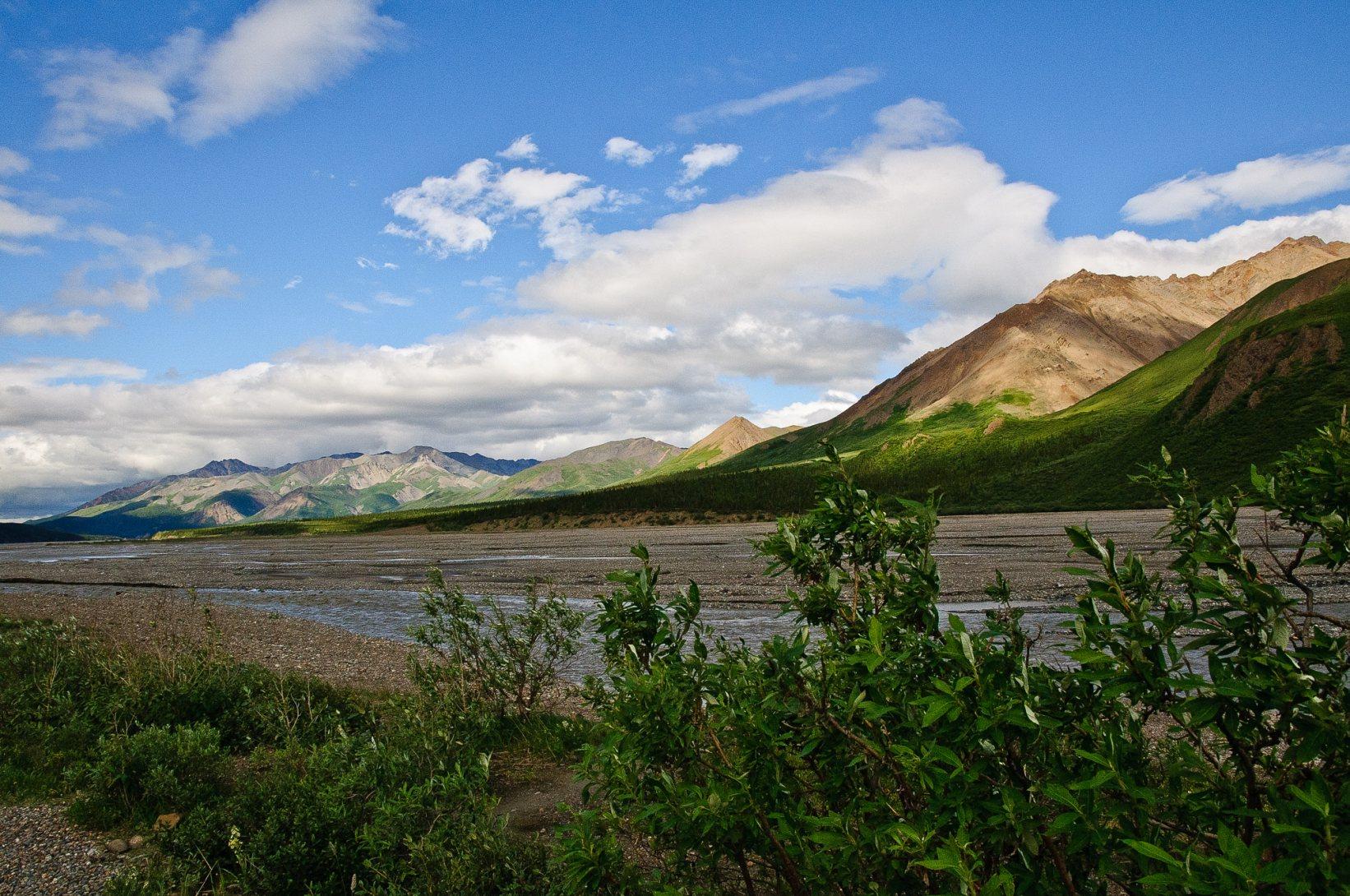 553_Alaska-2010-553.jpg
