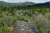 520_Alaska-2010-520.jpg